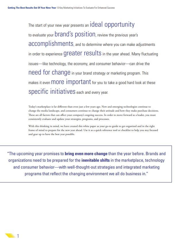 new year marketing strategy excerpt